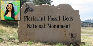 Bridget Borce Florissant Fossil Beds Internship