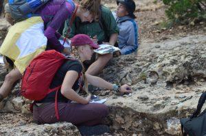 Fossils Kibab 1